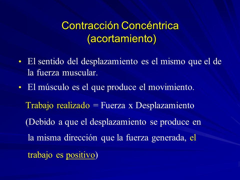 Contracción Concéntrica (acortamiento) El sentido del desplazamiento es el mismo que el de la fuerza muscular. El músculo es el que produce el movimie