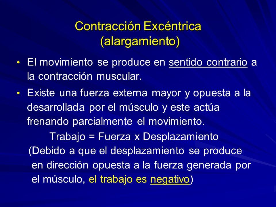 Contracción Excéntrica (alargamiento) El movimiento se produce en sentido contrario a la contracción muscular. Existe una fuerza externa mayor y opues