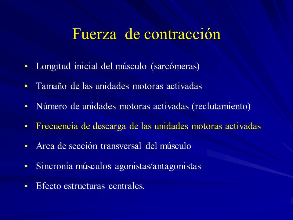 Fuerza de contracción Longitud inicial del músculo (sarcómeras) Tamaño de las unidades motoras activadas Número de unidades motoras activadas (recluta