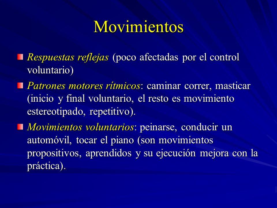 Movimientos Respuestas reflejas (poco afectadas por el control voluntario) Patrones motores rítmicos: caminar correr, masticar (inicio y final volunta