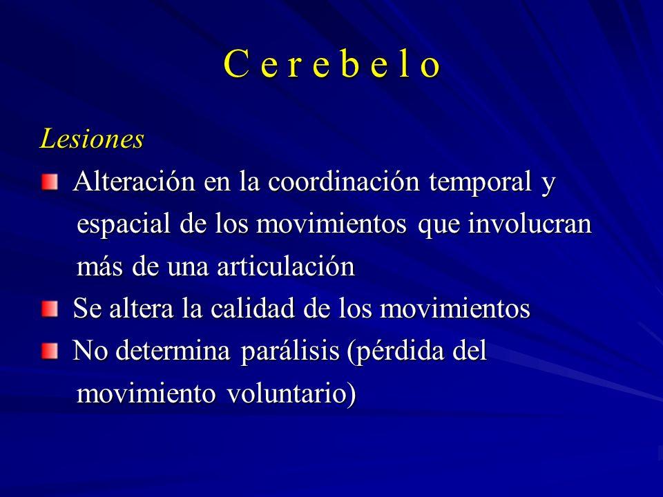 C e r e b e l o Lesiones Alteración en la coordinación temporal y Alteración en la coordinación temporal y espacial de los movimientos que involucran