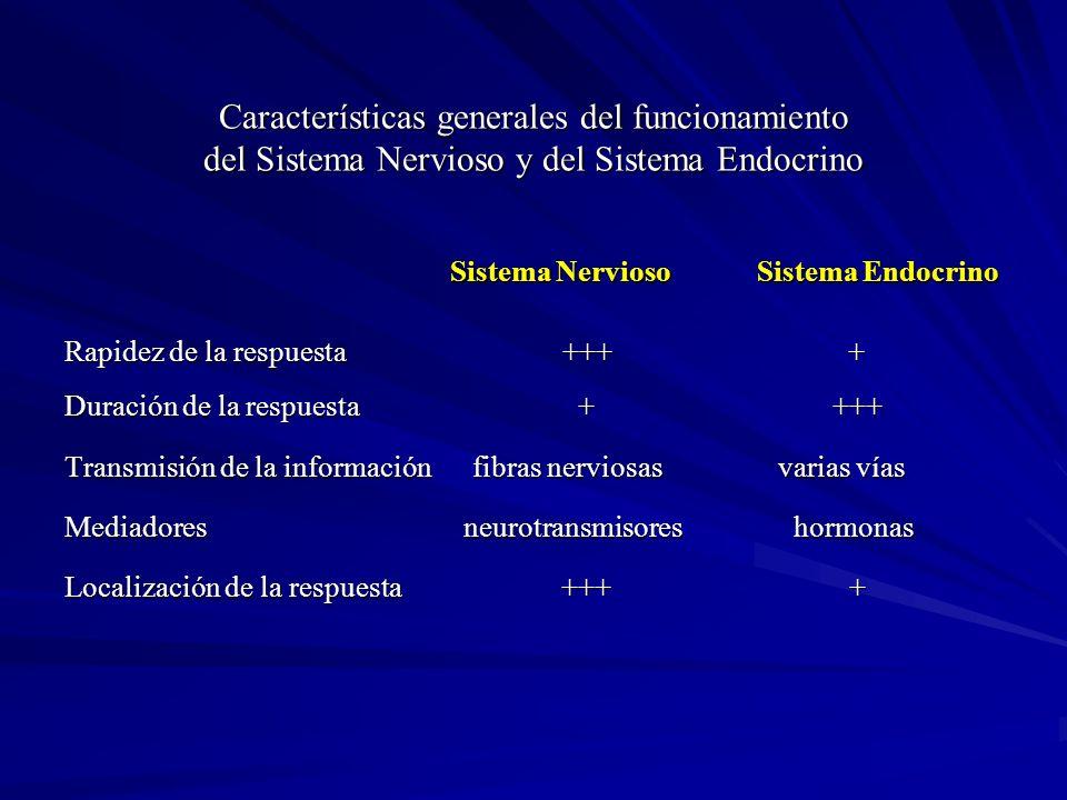 Características generales del funcionamiento del Sistema Nervioso y del Sistema Endocrino Sistema Nervioso Sistema Endocrino Sistema Nervioso Sistema