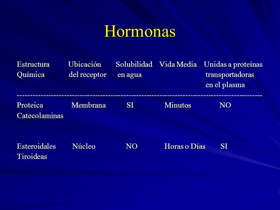 Hormonas Estructura Ubicación Solubilidad Vida Media Unidas a proteínas Química del receptor en agua transportadoras en el plasma en el plasma--------