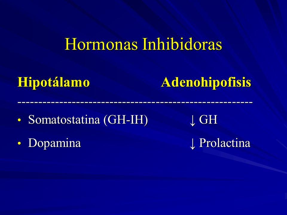 Hormonas Inhibidoras HipotálamoAdenohipofisis -------------------------------------------------------- Somatostatina (GH-IH) GH Somatostatina (GH-IH)