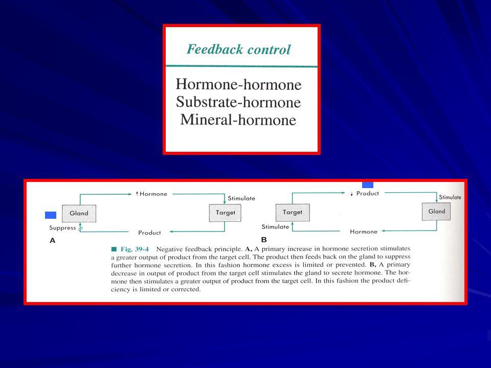 HORMONA CÉLULA TARGET GLÁNDULA Regulación hormonal : FEED-BACK- NEGATIVO PRODUCTO