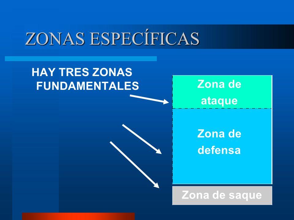 4º.-DISTRIBUCIÓN DE LOS JUGADORES SOBRE LA PISTA Cada equipo cuenta con seis jugadores/as distribuidos sobre la pista: Una primera línea delantera de tres jugadores/as (delanteros) en tareas de ataque y una segunda línea de otros tres jugadores/as (zagueros) en tareas de defensa.