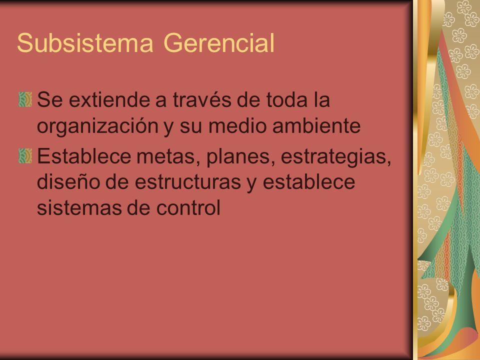 Subsistema Gerencial Se extiende a través de toda la organización y su medio ambiente Establece metas, planes, estrategias, diseño de estructuras y es