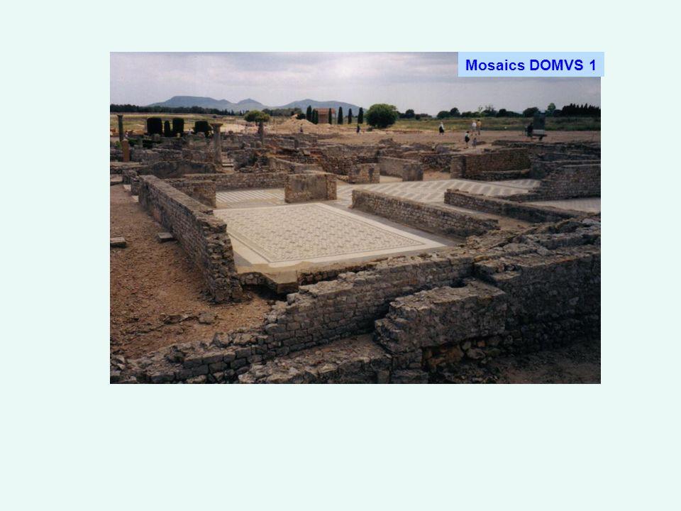 Mosaics DOMVS 1