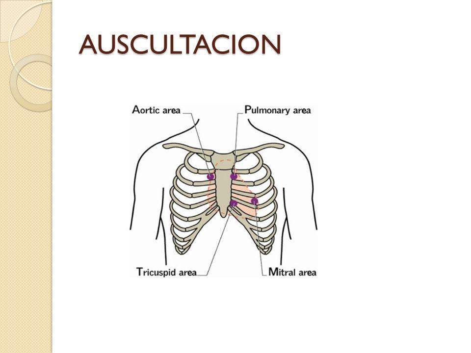 AUSCULTACION
