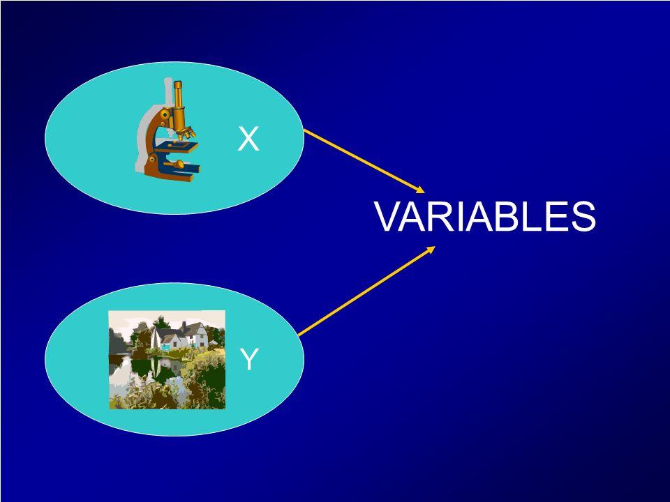 X Y VARIABLES