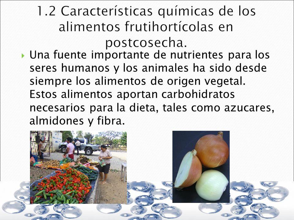 Una fuente importante de nutrientes para los seres humanos y los animales ha sido desde siempre los alimentos de origen vegetal. Estos alimentos aport