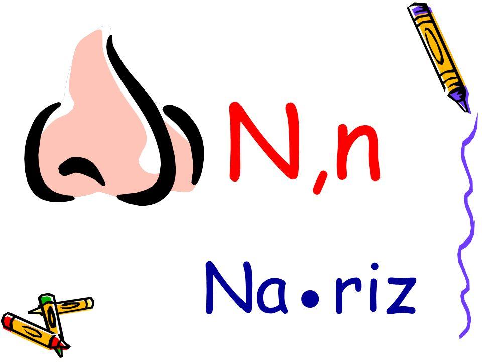 N,n Nariz