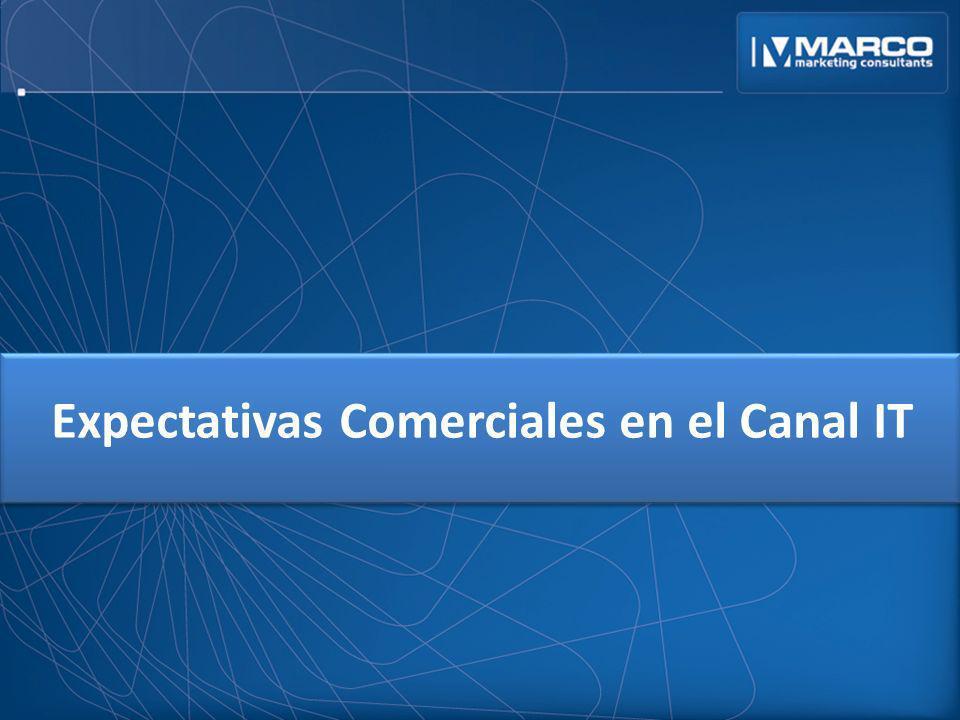Expectativas Comerciales en el Canal IT
