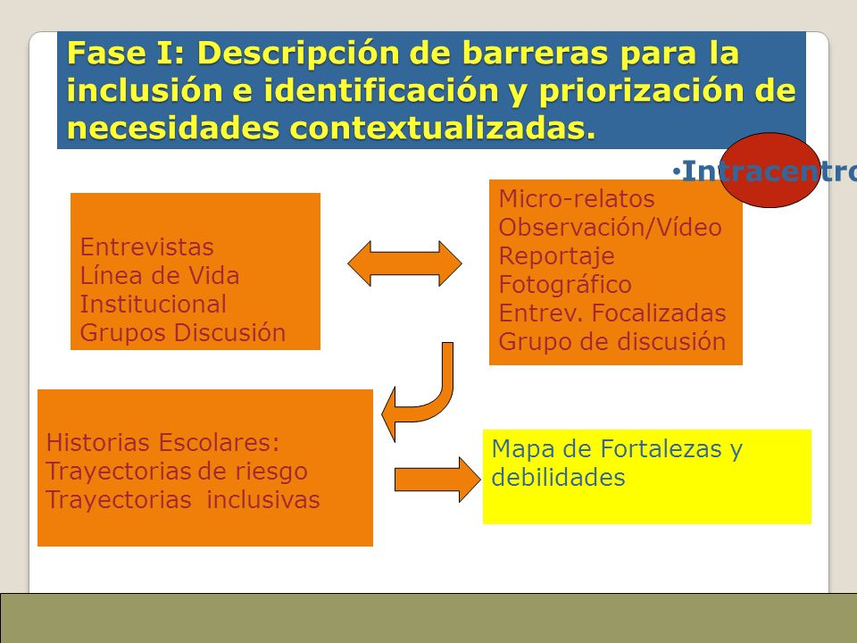 Fase I: Descripción de barreras para la inclusión e identificación y priorización de necesidades contextualizadas. Entrevistas Línea de Vida Instituci