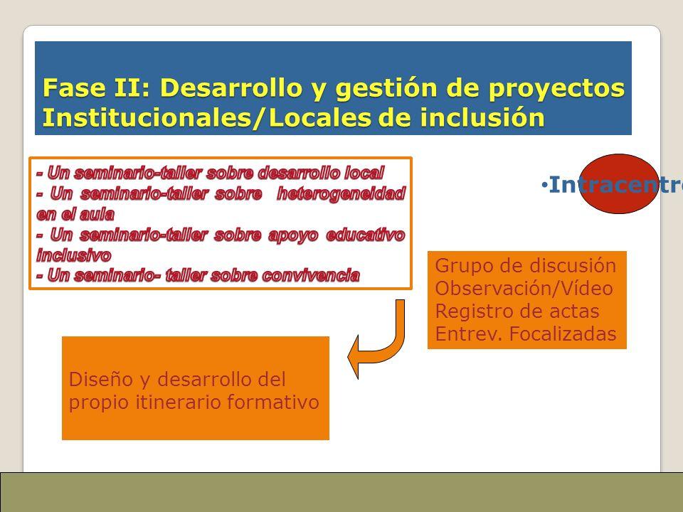 Fase II: Desarrollo y gestión de proyectos Institucionales/Locales de inclusión Grupo de discusión Observación/Vídeo Registro de actas Entrev. Focaliz
