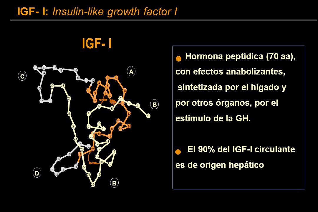 Condiciones de deficiencia de IGF-I Síndrome de Laron Ausencia de receptores para la GH Déficit de IGF- I Enanismo y falta desarrollo GH normal e incl