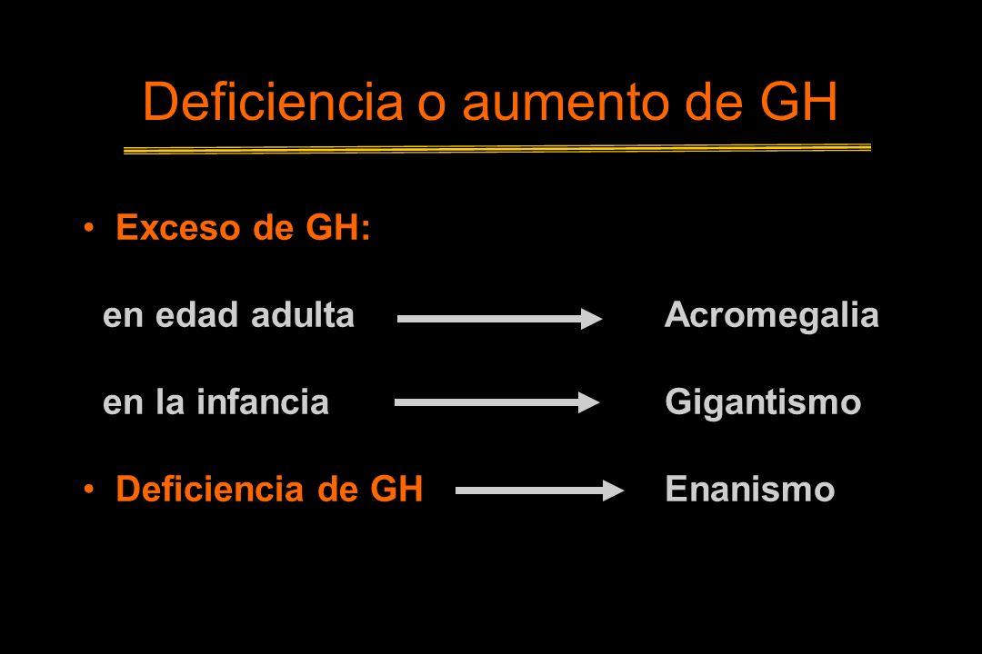 Deficiencia o aumento de GH Exceso de GH: en edad adulta Acromegalia en la infanciaGigantismo Deficiencia de GHEnanismo