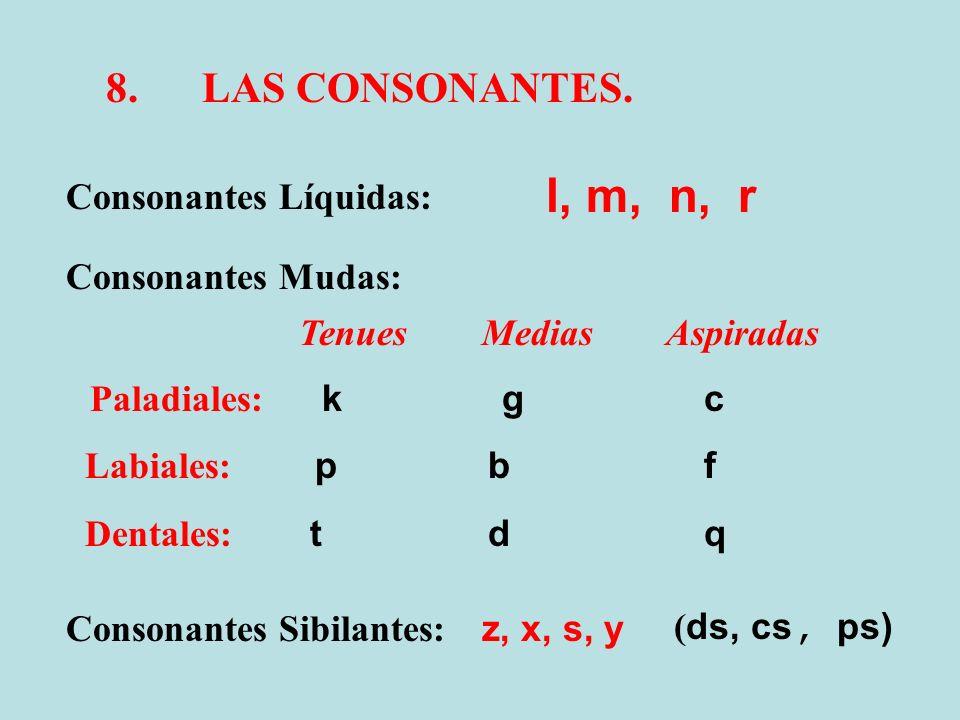 8.LAS CONSONANTES. Consonantes Líquidas: Consonantes Mudas: Consonantes Sibilantes: l, m, n, r Tenues Medias Aspiradas Paladiales: k g c Labiales: p b