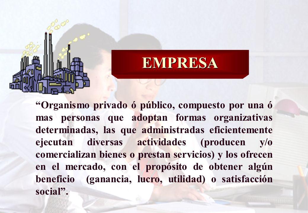 29 Conjunto (o sistema) organizado de medios humanos, materiales y financieros, bajo el estímulo de la consecución de un objetivo y orientado hacia la