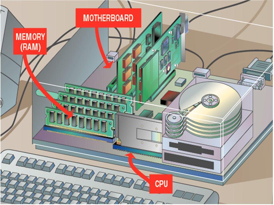 El procesamiento toma lugar en la Unidad de Procesamiento Central (CPU por sus siglas en inglés Central Processing Unit). La memoria del sistema tambi