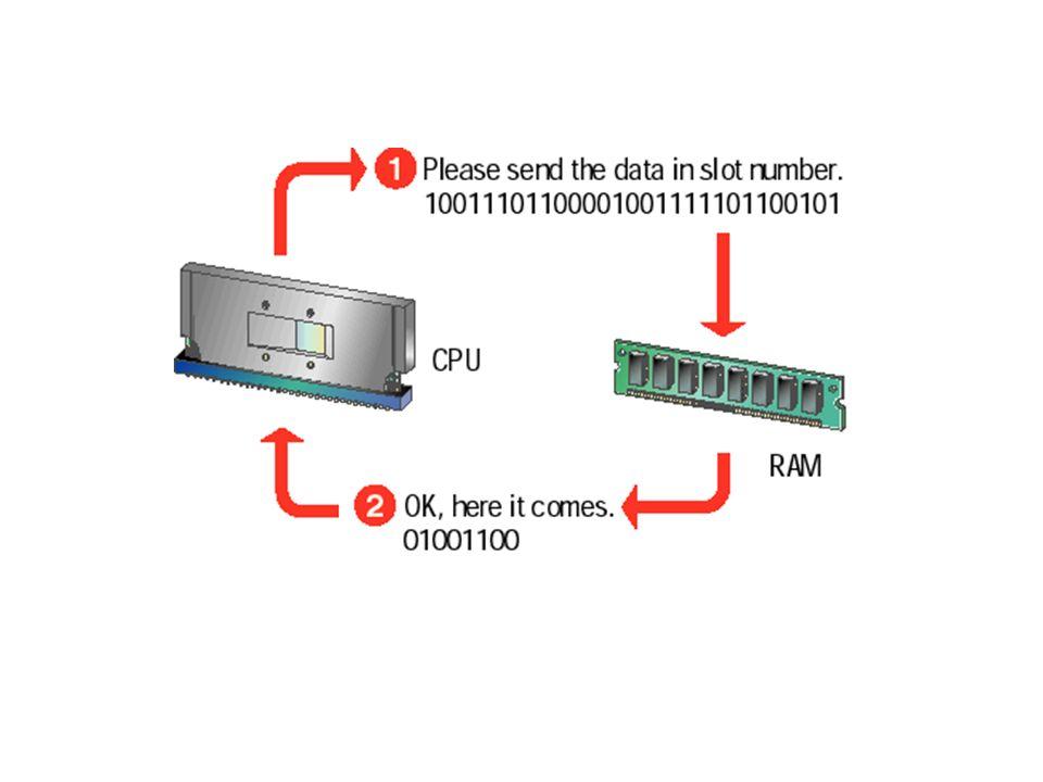RAM almacena los datos y el código de los programas necesario para el CPU. Los contenidos del RAM cambian rápido y frecuentemente. La memoria de lectu