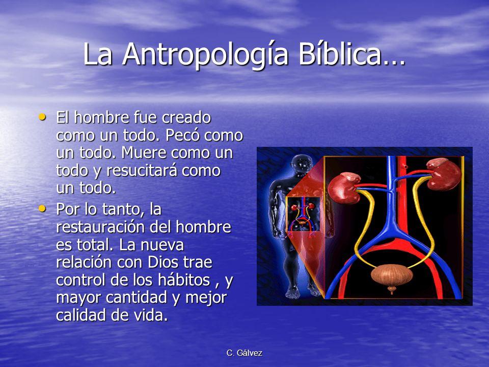 C. Gálvez La Antropología Bíblica: Base para el Mensaje de Salud Fue creado como alma viviente (Gén. 2:7); es decir, persona total. Fue creado como al
