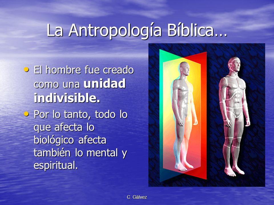C. Gálvez La Antropología Bíblica… El hombre fue creado como un todo. Pecó como un todo. Muere como un todo y resucitará como un todo. El hombre fue c