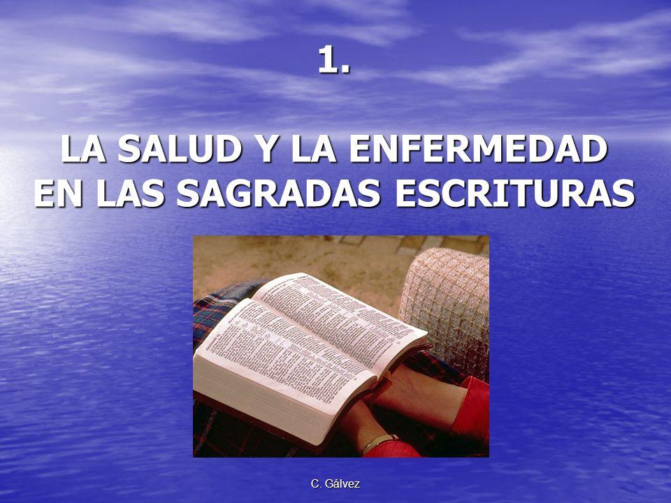 C. Gálvez Definición de términos Adventista. De la palabra advenimiento. Designa a toda persona u organización que profesa y proclama la esperanza de