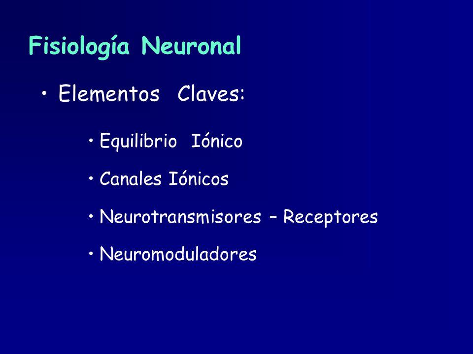 Fisiología Neuronal Elementos Claves: Equilibrio Iónico Canales Iónicos Neurotransmisores – Receptores Neuromoduladores