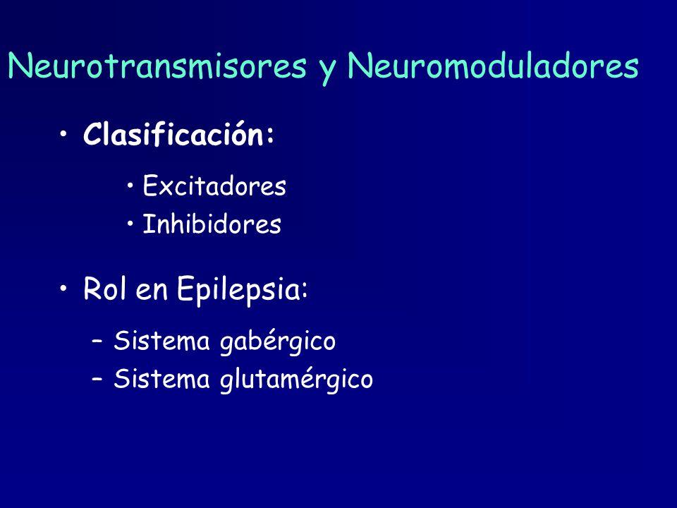 Neurotransmisores y Neuromoduladores Clasificación: Excitadores Inhibidores Rol en Epilepsia: –Sistema gabérgico –Sistema glutamérgico
