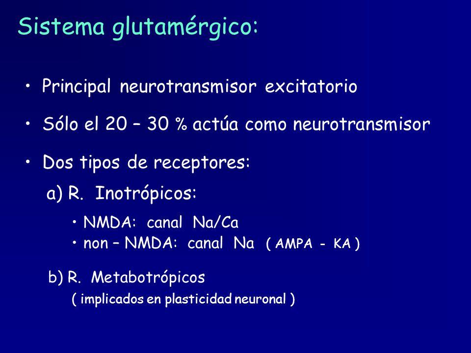 Sistema glutamérgico: Principal neurotransmisor excitatorio Sólo el 20 – 30 % actúa como neurotransmisor Dos tipos de receptores: a) R. Inotrópicos: N
