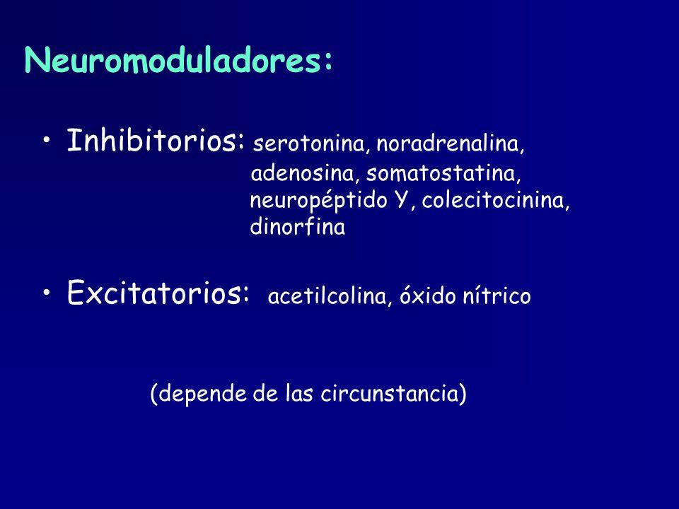 Neuromoduladores: Inhibitorios: serotonina, noradrenalina, adenosina, somatostatina, neuropéptido Y, colecitocinina, dinorfina Excitatorios: acetilcol