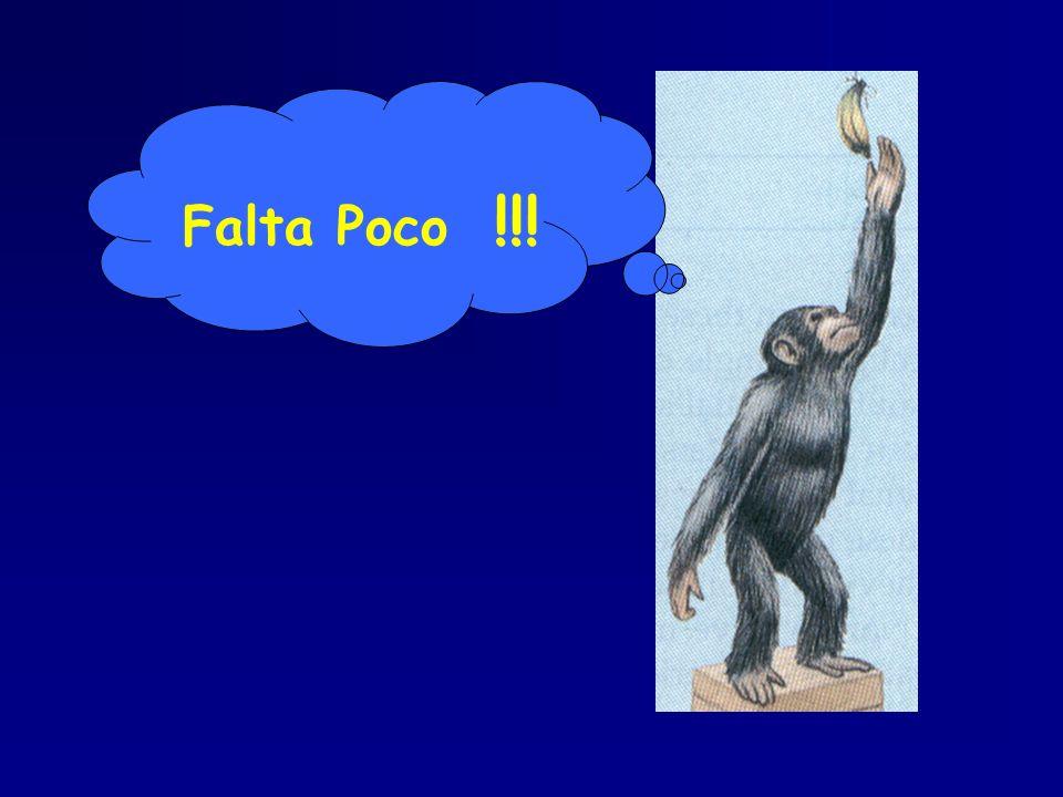Falta Poco !!!
