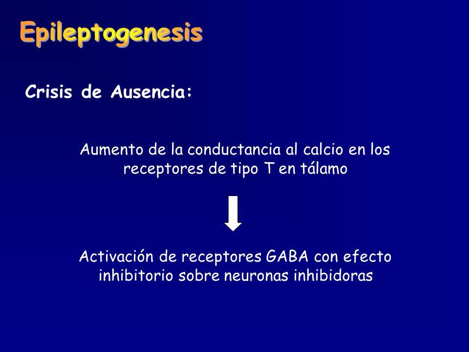 Crisis de Ausencia: Aumento de la conductancia al calcio en los receptores de tipo T en tálamo Activación de receptores GABA con efecto inhibitorio so