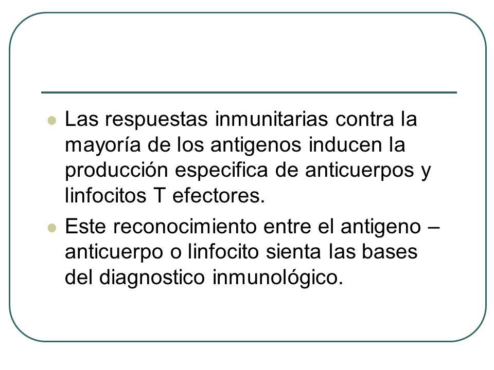Las respuestas inmunitarias contra la mayoría de los antigenos inducen la producción especifica de anticuerpos y linfocitos T efectores. Este reconoci