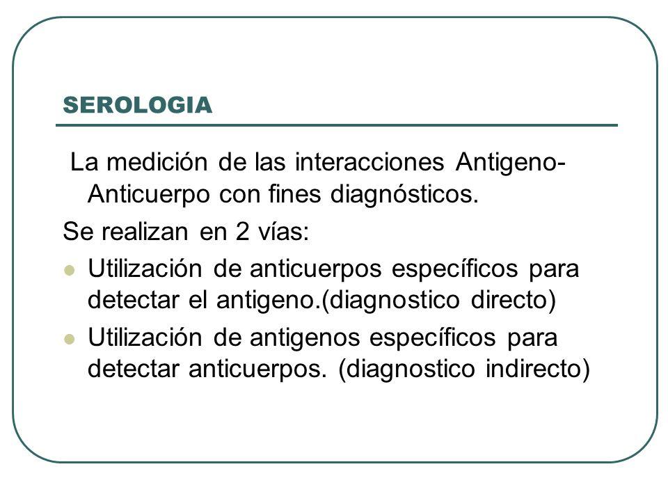 SEROLOGIA La medición de las interacciones Antigeno- Anticuerpo con fines diagnósticos. Se realizan en 2 vías: Utilización de anticuerpos específicos