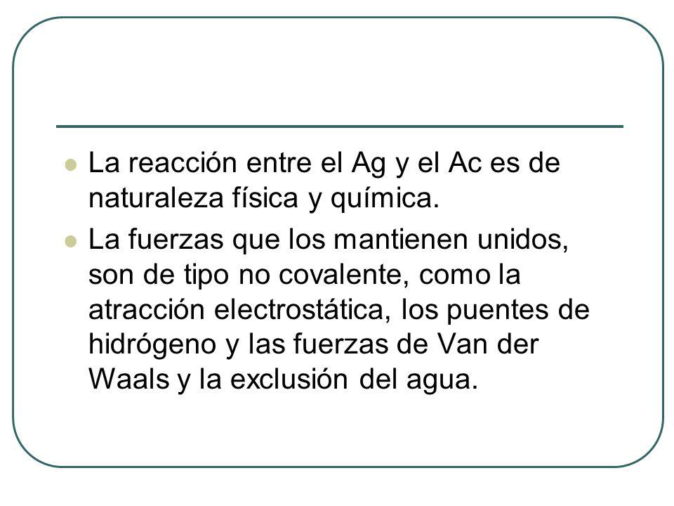 La reacción entre el Ag y el Ac es de naturaleza física y química. La fuerzas que los mantienen unidos, son de tipo no covalente, como la atracción el