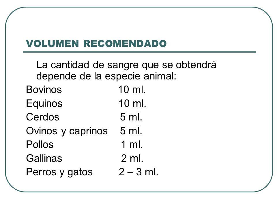 VOLUMEN RECOMENDADO La cantidad de sangre que se obtendrá depende de la especie animal: Bovinos 10 ml. Equinos 10 ml. Cerdos 5 ml. Ovinos y caprinos 5