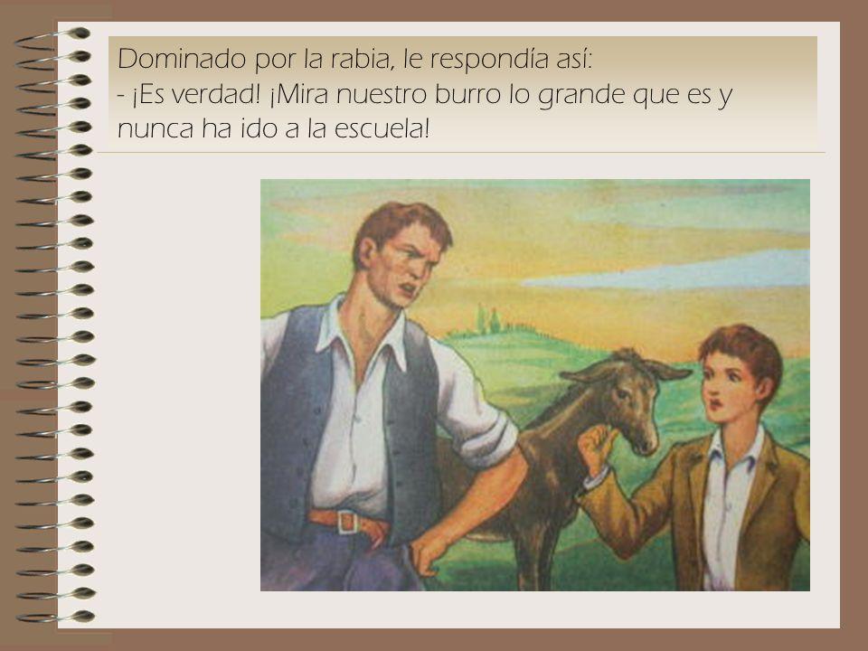 Dominado por la rabia, le respondía así: - ¡Es verdad! ¡Mira nuestro burro lo grande que es y nunca ha ido a la escuela!