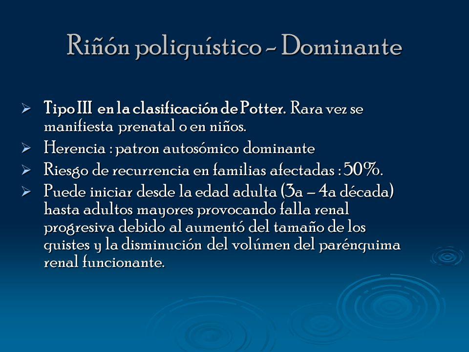 Riñón poliquístico - Dominante Tipo III en la clasificación de Potter. Rara vez se manifiesta prenatal o en niños. Tipo III en la clasificación de Pot