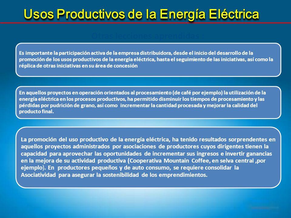 Usos Productivos de la Energía Eléctrica Otras lecciones aprendidas : Es importante la participación activa de la empresa distribuidora, desde el inic