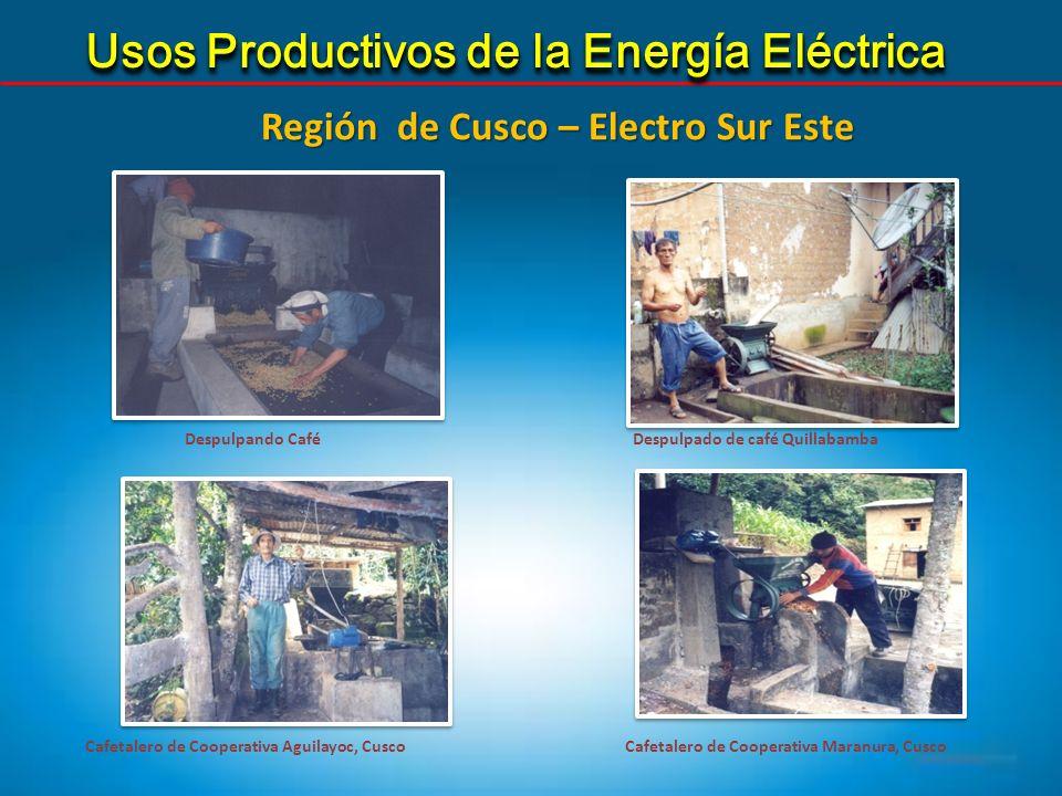 Usos Productivos de la Energía Eléctrica Despulpando CaféDespulpado de café Quillabamba Cafetalero de Cooperativa Maranura, CuscoCafetalero de Coopera