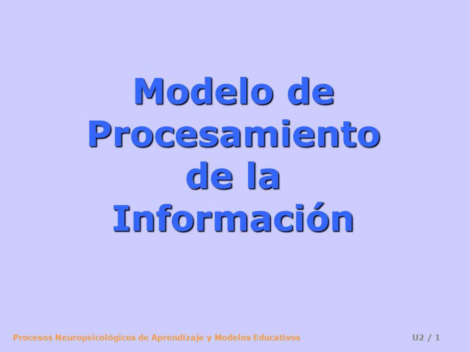 Procesos Neuropsicológicos de Aprendizaje y Modelos Educativos U2 / 12 Factores: Número de fuentes de información Semejanza de las fuentes Complejidad de las fuentes Diferentes canales de información Filtro ¡RUIDO SORPRESIVO.
