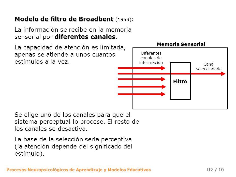 Procesos Neuropsicológicos de Aprendizaje y Modelos Educativos U2 / 10 Modelo de filtro de Broadbent Modelo de filtro de Broadbent (1958): diferentes