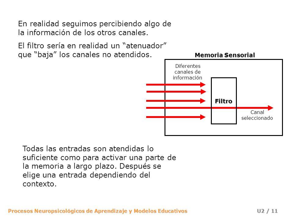 Procesos Neuropsicológicos de Aprendizaje y Modelos Educativos U2 / 11 En realidad seguimos percibiendo algo de la información de los otros canales. E