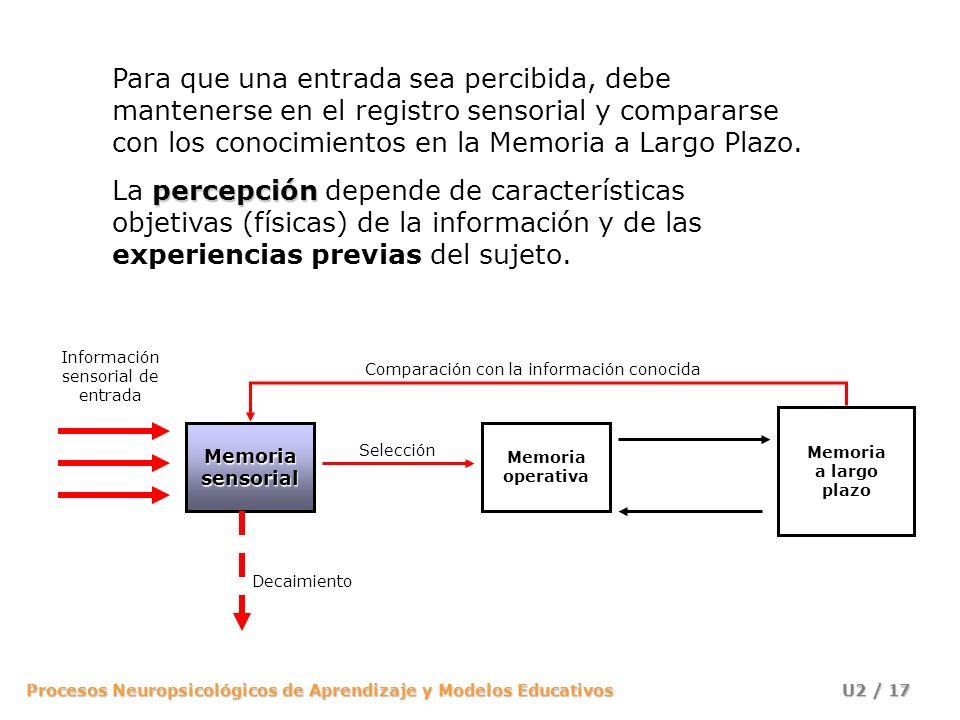 Procesos Neuropsicológicos de Aprendizaje y Modelos Educativos U2 / 17 Memoria operativa Memoria a largo plazo Información sensorial de entrada Memori