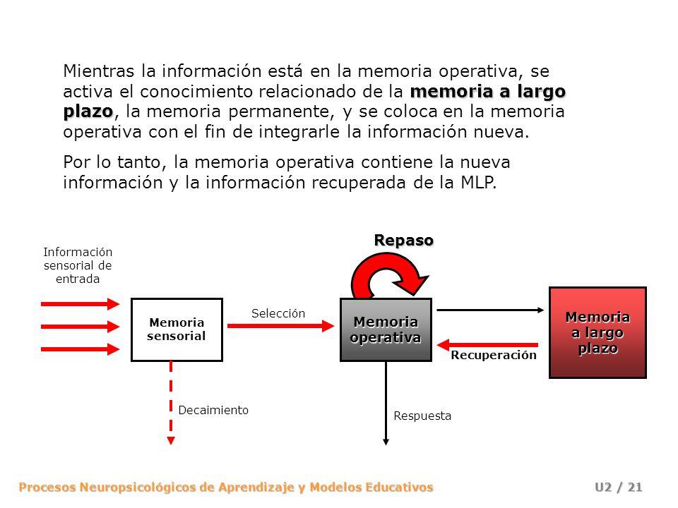 Procesos Neuropsicológicos de Aprendizaje y Modelos Educativos U2 / 21 memoria a largo plazo Mientras la información está en la memoria operativa, se