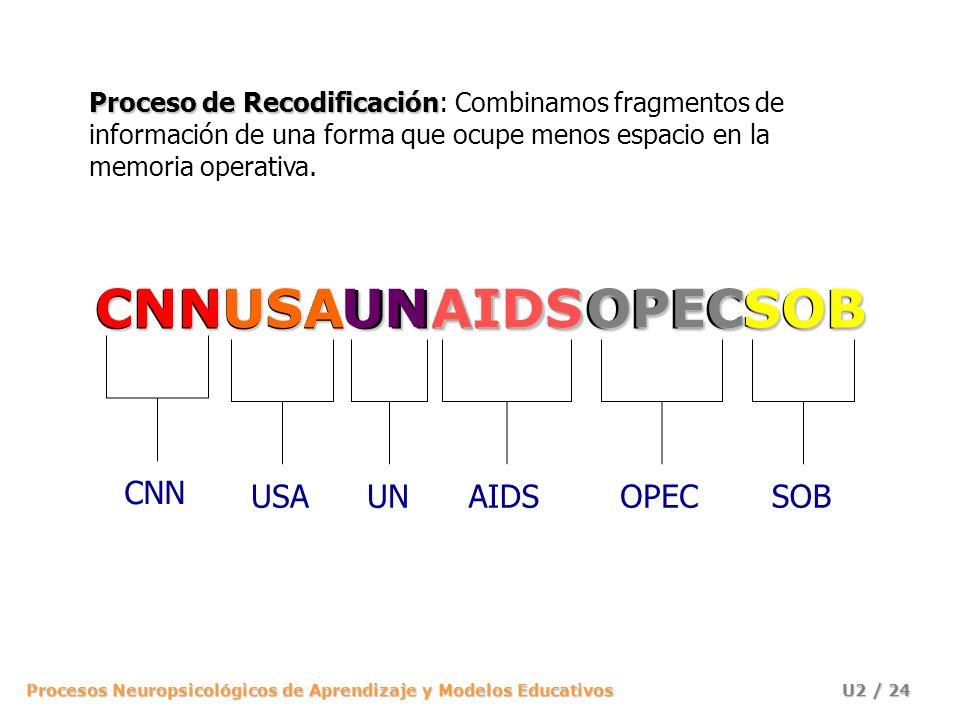 Procesos Neuropsicológicos de Aprendizaje y Modelos Educativos U2 / 24 CNNUSAUNAIDSOPECSOB CNN USA UN AIDSAIDS OPECOPEC SOBSOB Proceso de Recodificaci
