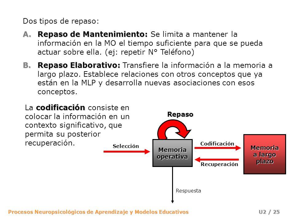 Procesos Neuropsicológicos de Aprendizaje y Modelos Educativos U2 / 25 Dos tipos de repaso: A.Repaso de Mantenimiento: A.Repaso de Mantenimiento: Se l