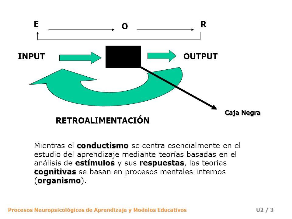 Procesos Neuropsicológicos de Aprendizaje y Modelos Educativos U2 / 3 INPUTOUTPUT RETROALIMENTACIÓN E O R conductismo estímulosrespuestas cognitivas o